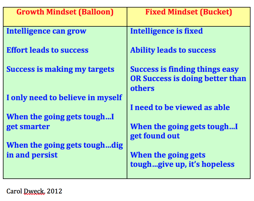 Fixed Versus Growth